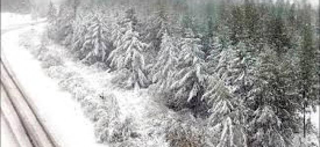 Fresh snow fall traffic suspended on Srinagar leh highway