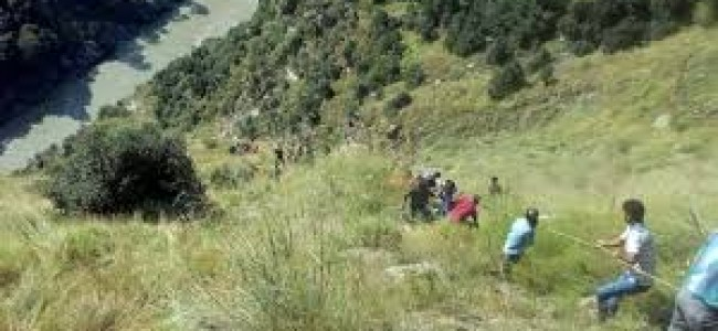 Increase in Forest Cover: Erstwhile State of J&K figures among top 5