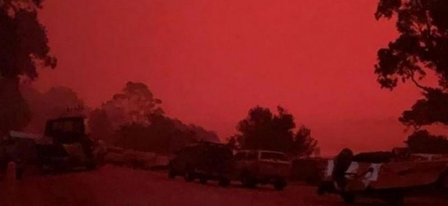 'Blood-red sky, choking dust': Thousands trapped on Australia beaches by wildfires
