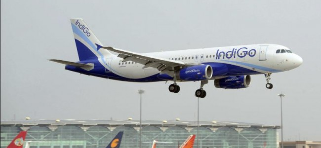 IndiGo to cut salaries of senior employees from May