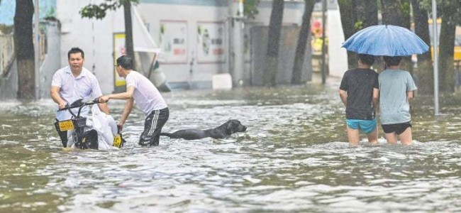 Typhoon drenches China's east, affects Shanghai