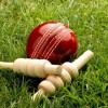 Aga Syed Mehdi T20 cricket tourney from Tuesday