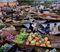 vegetable market in Dal lake.
