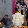 Kashmir celebrates Mahashivratri