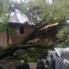 Windstorm wreak havoc in TRAL