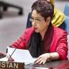 At UN, Pakistan calls for resolving Kashmir & Palestine disputes for world peace