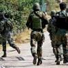 Five LeT militants killed in Bandipora gunfight: Police